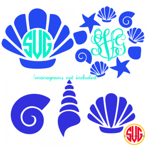 Shells and Shell Monogram Frames